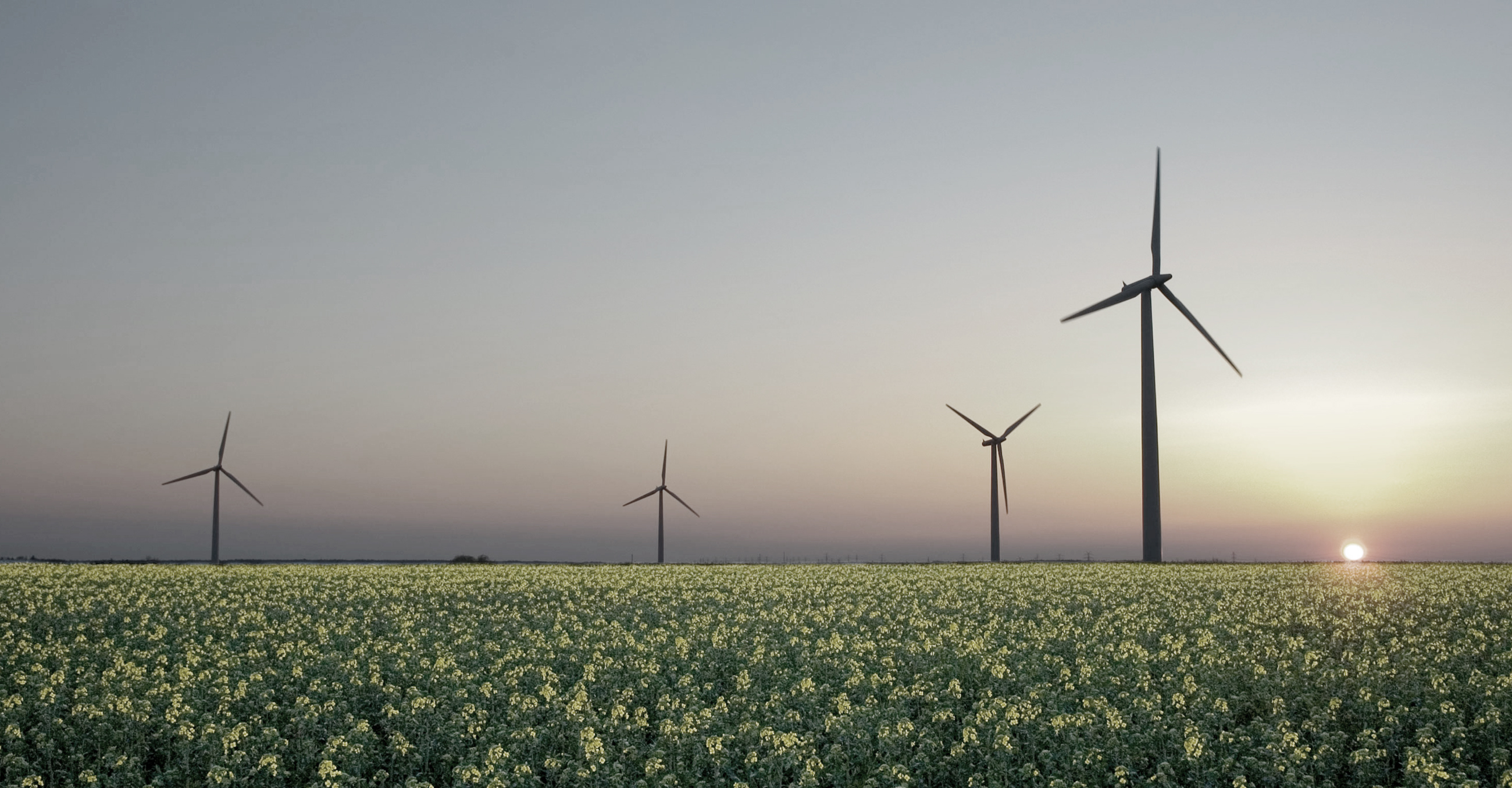 Sustainable Energy Industry in the Netherlands